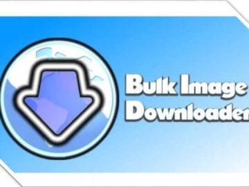 bulk image logo version